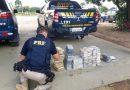 Dupla que comprou droga no Acre é presa pela PRF em Rondônia