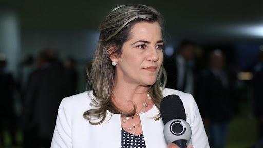 Mara Rocha aprova requerimentos para reunião presencial da comissão de agricultura
